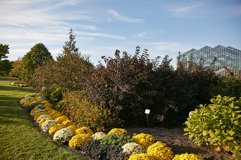 at frederik meijer gardens sculpture park - Frederick Meijer Garden