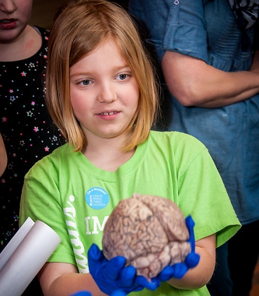 At the Brain Awareness Week Neuroscience Fair, children can see, feel and examine a real human brain