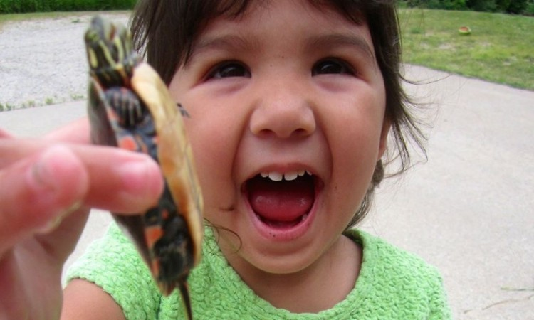 My daughter Maddie is fearless around frogs and turtles. I want her to also be fearless in the work world.