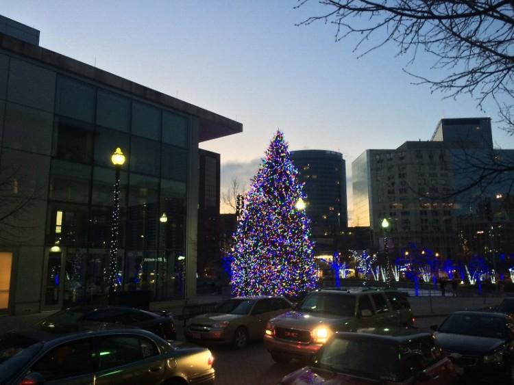 Christmas Tree at dusk in Rosa Parks Circle