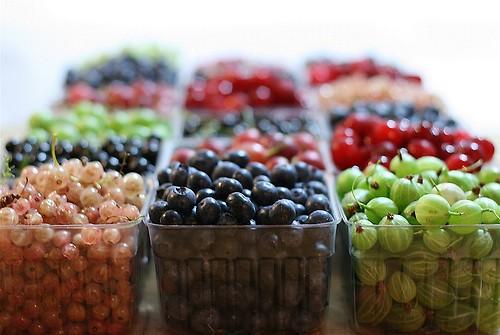 Currants, blueberries and gooseberries