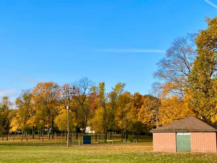 Garfield Park during 2019's fall season.