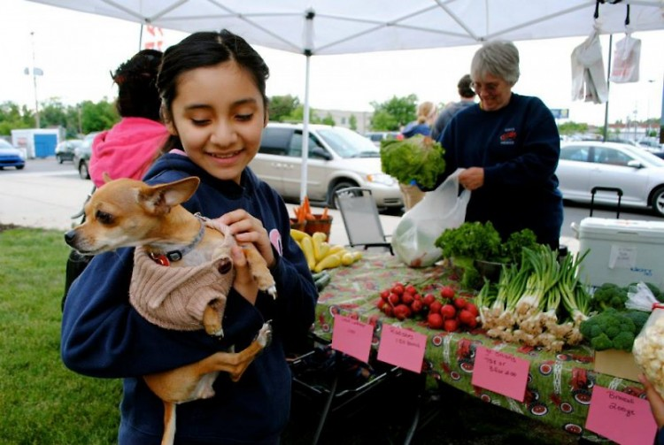 The YMCA Farmers Market provides fun for the whole family.
