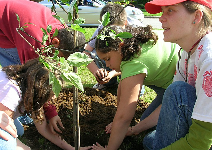 Planting apple trees was one of many fun activities during TEAM 21 summer programming