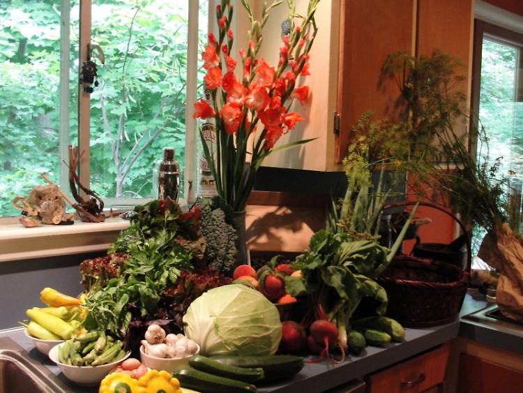 This week's Turtle Island CSA Share (except the peaches, blueberries and flowers)