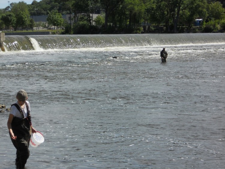 Fishermen at the Sixth Street Dam