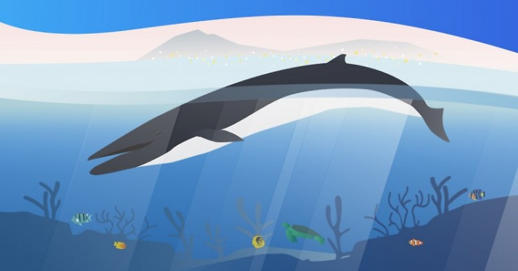 New virtual reality exhibition of Finny the Whale at the Grand Rapids Public Museum