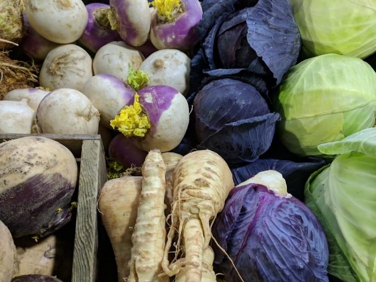 Cabbage & Garlic