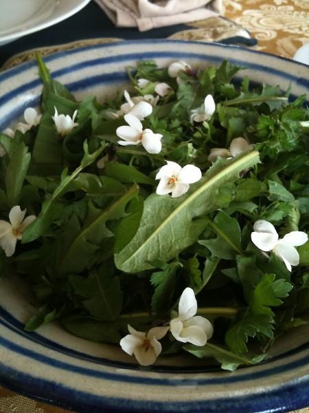 Re-wilded Spring Salad: Dandelion, Violet leaf, Wild Chives, White Violet flowers & Parsley