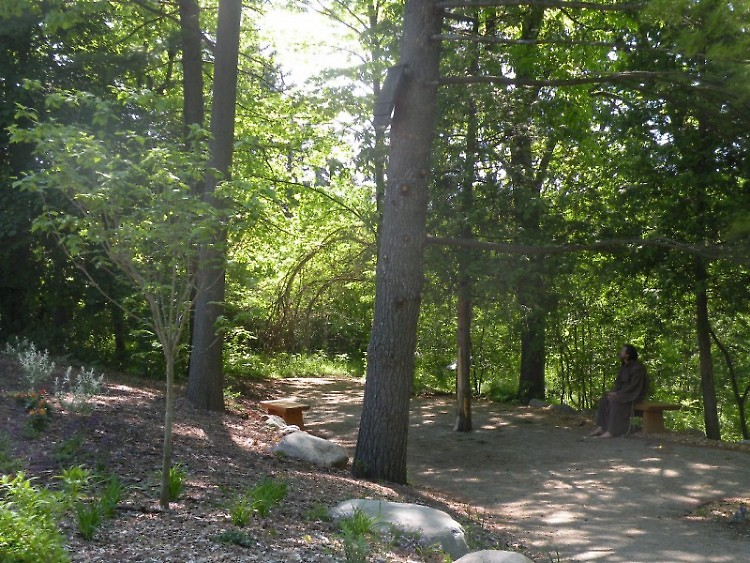 Paths around the Dominican Center at Marywood