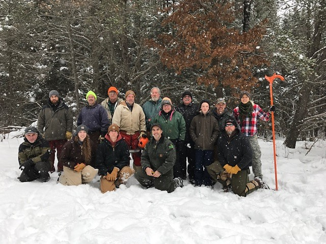 """MUCC """"On the Ground"""" volunteers felled about 250 trees to improve habitat for the snowshow hare in Grayling State Forest."""