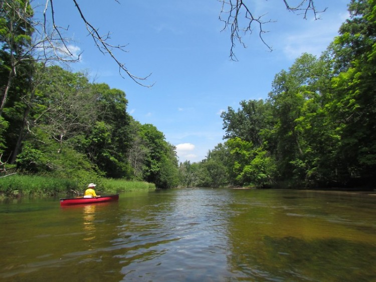 There are numerous canoe and kayak liveries along the Pere Marquette River in northern Michigan.