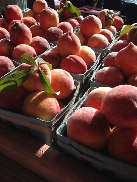 Michigan Peaches