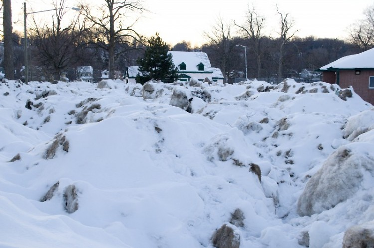 Snow piles stored at Lincoln Park