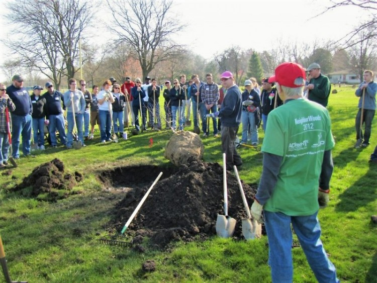 Planting demonstration by Friends of Grand Rapids Parks