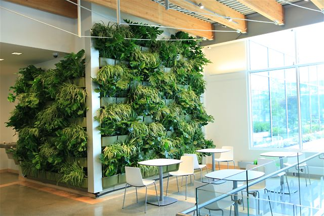 Indoor Garden Wall Downtown market expands green space with indoor living wall the downtown market expands green space with indoor living wall the rapidian workwithnaturefo