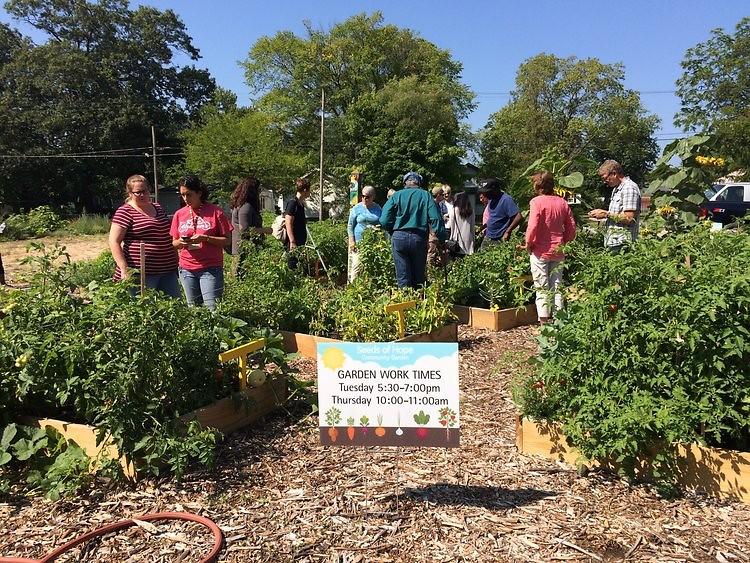 Sharing Garden pilot site in 2017.
