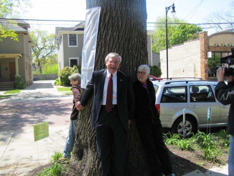 Mayor George Heartwell, Dotti Clune and Carol Moore hug the 2012 Mayor's Tree of the Year