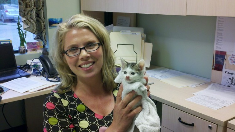 New Executive Director Trudy Ender with Gravy Train, a kitten with respiratory problems she's fostering.