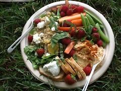 Springy Quinoa Salad platter
