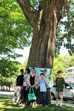 Angela Schmidt and her sons stand in front of the 2016 Mayor's Tree of the Year in Lincoln Park.
