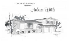 Original Marketing Flyer for Auburn Hills