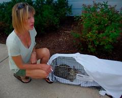 Carol Kelly with cat Freda, Fall 2014.