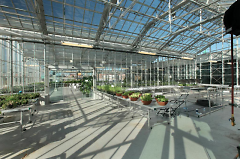 Second story greenhouse