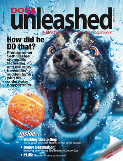 Mary Ullmer is editor of the new local publication Dogs Unleashed