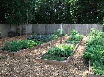 Community raised bed gardens