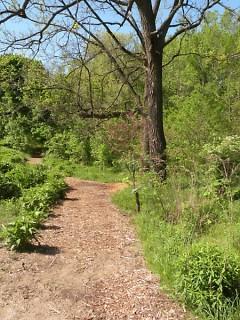 Meditation Garden Path
