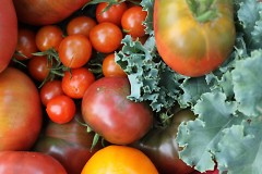 Tomatoes and Kale