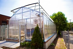 Baxter greenhouse