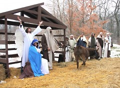 Living nativity at the Dominican Center of Marywood