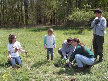 BNC Volunteers working in the field