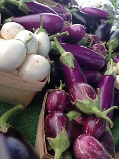 Eggplant, multiple varieties