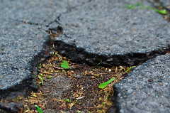 Extra State funding could help repair potholes
