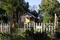Tree House Community Garden