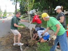 Volunteers planting trees at a Friends of Grand Rapids Parks Event.