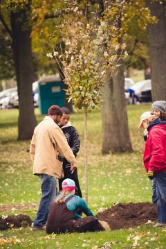 Citizen Foresters planting trees in Grand Rapids