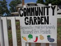The Roosevelt Park Community Garden will be revitalized on June 10th.